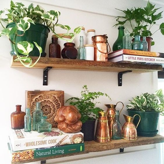 Plants For Kitchen To Decorate It: Modern Boho Kitchens: Chic & Eclectic Style